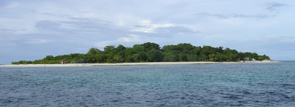Tauchen auf Mantigue-Island (Camiguin)