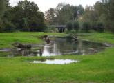 Renaturierung der Niers 1(Haus Golten, Geldern, 10/2014)